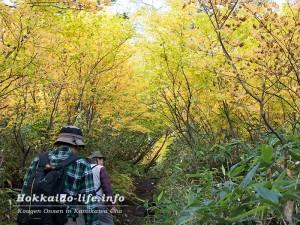 大雪高原温泉の沼めぐり登山コースをトレッキング・入山編