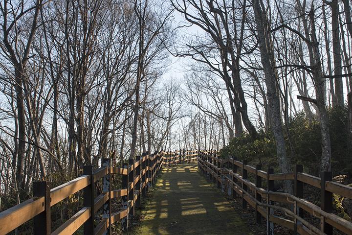 嵐山展望台への木製通路