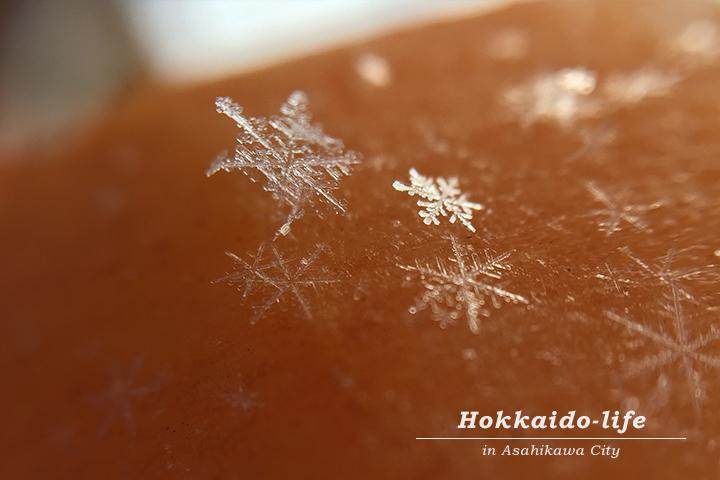 吊るし柿と雪の結晶