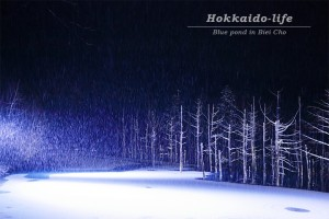 "Blue light shows up ""blue pond"" with snow~青い光の雪の""青い池""~"