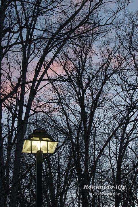 外灯と夕焼け空