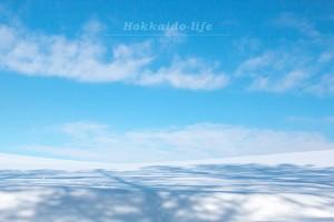 続・初めての雪の美瑛~マイルドセブン丘