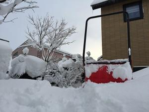 2月のある日の裏庭の除雪について