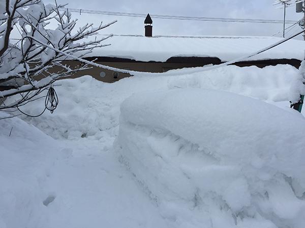 除雪前の裏庭