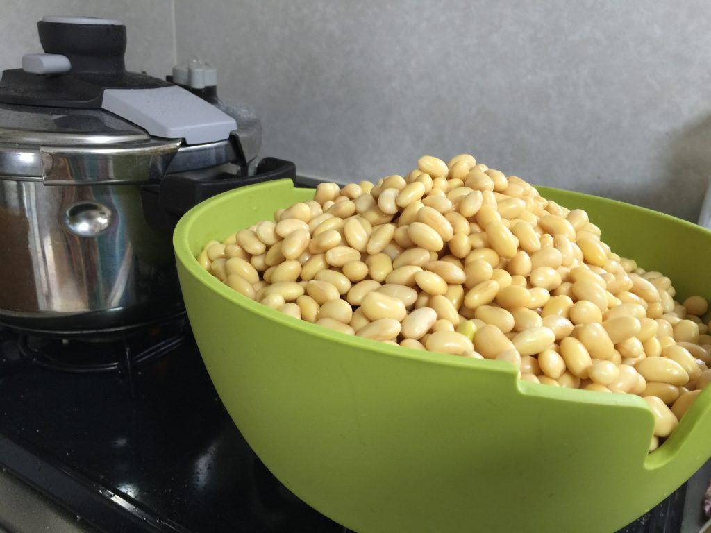 一晩浸水させた大豆-自家製味噌の仕込み(2015年)