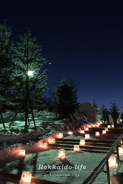 旭山動物園「雪あかりの動物園」のアイスキャンドル