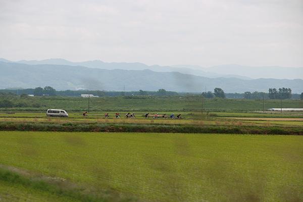 初夏の北海道を走る自転車レーサーたち