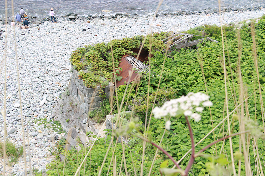 島武意海岸の石垣