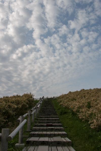 神威岬の展望広場への遊歩道