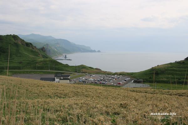 神威岬から見たタコ岩