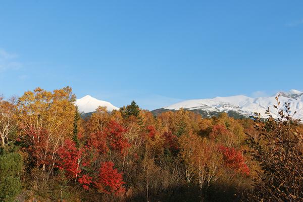 冠雪した十勝岳連峰と山裾の紅葉