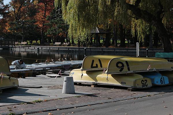 常磐公園のボートの片づけ
