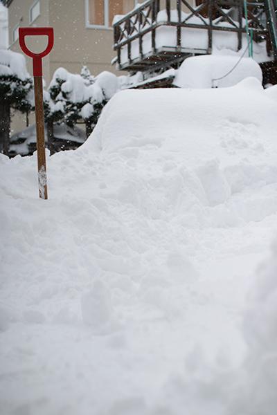 庭に積もった雪は除雪スコップのここら辺まで