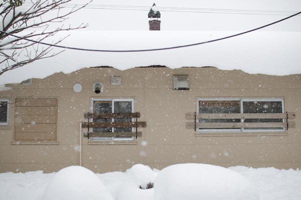 11月10日に窓下まで積もった雪と雪囲い