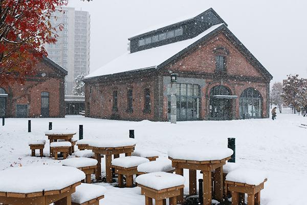 雪降るcocode