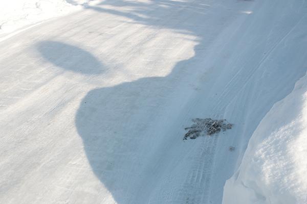 雪が積もった道路の染み