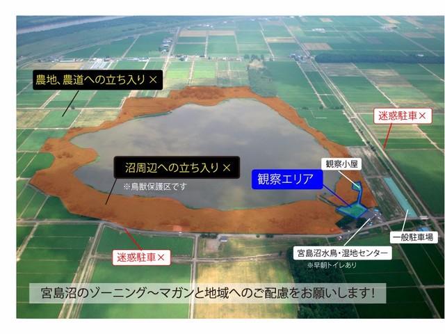 マナーシリーズ:宮島沼のマガン撮影の場合