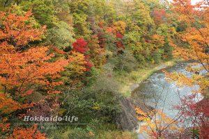夕張市 滝の上自然公園の紅葉