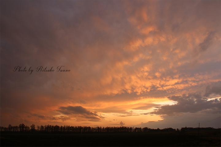夕焼け空と雲