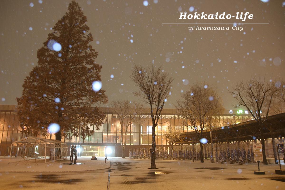 雪降る岩見沢駅舎とメタセコイヤ