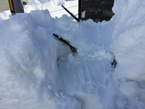 立てたワイパーと車の積雪量