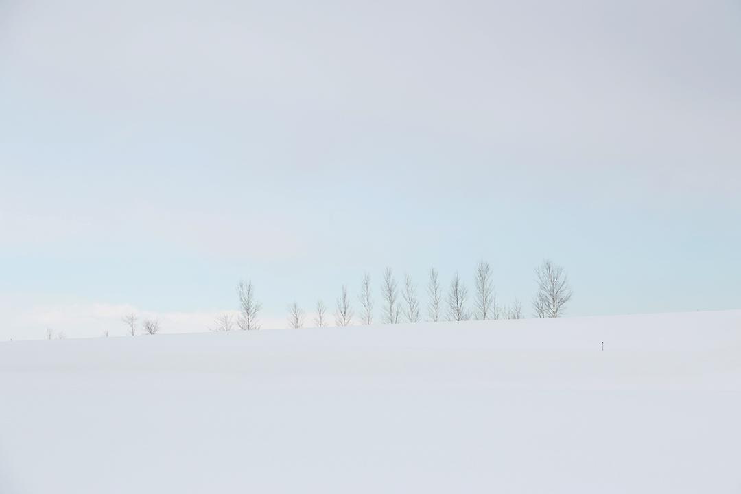 岩見沢市内の冬景色