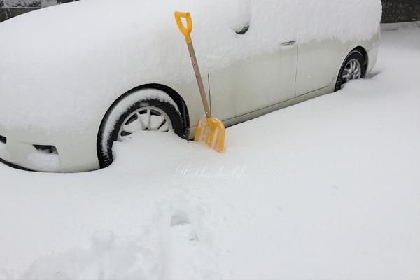 20181129の雪(岩見沢市内)