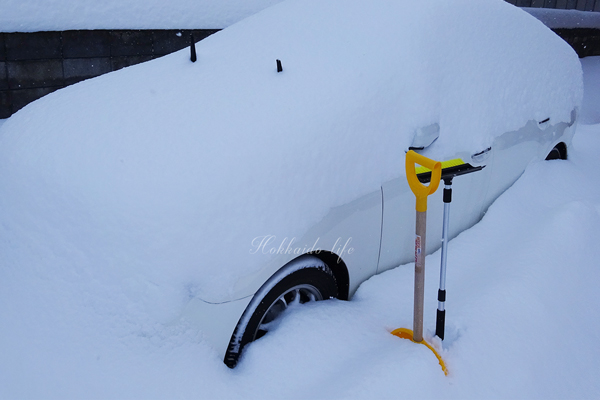 20181130の雪(岩見沢市内)