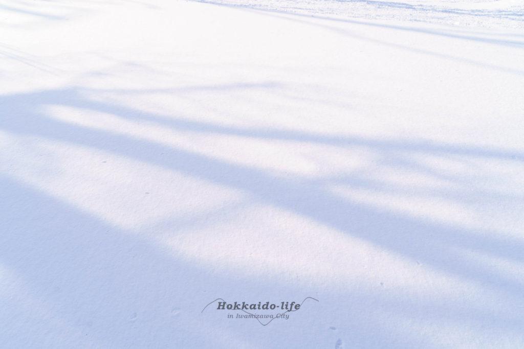 新雪を前に立ち止まる